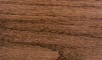 Species Oak Stain (American Walnut)